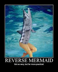 Mermaid Memes - reverse mermaid really funny pictures collection on picshag com