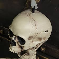 halloween skeleton hoom decor scary skull man bone creepy prop