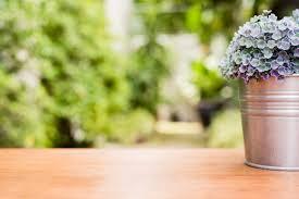 le bureau verte plante verte dans un pot de fleurs sur un bureau en bois à l avant