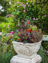Patio Plants For Sun 35 Beautiful Container Gardens Midwest Living
