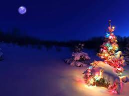 christmas lights snow wallpaper year tree chair winter bokeh