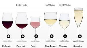 10 different types of wine glasses explained infographic