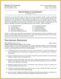 senior executive resume senior executive resume government experienced writers a senior