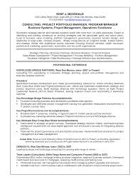 Business Systems Analyst Resume Sample by Resume Portfolio Resume Sample