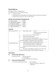 Gross Anatomy Of The Brain And Cranial Nerves Worksheet Complete Summary Of The Head And Neck Anatomy