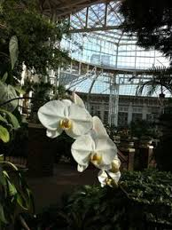 at the opryland hotel in nashville favorite places