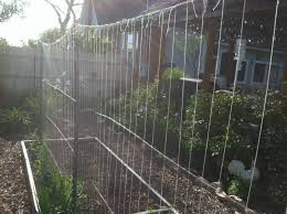 making a trellis for sugar snap peas how to build and utilize a