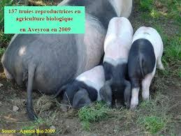 offre emploi chambre agriculture agriculture biologique chambre d agriculture de l aveyron
