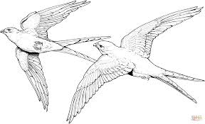 couple of falcon coloring page free printable coloring pages