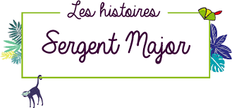 si e sergent major application mobile les histoires sergent major sergent major