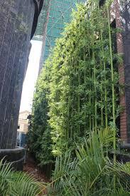 outdoor decoration artificial bamboo tree buy artificial