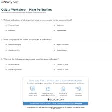 quiz u0026 worksheet plant pollination study com