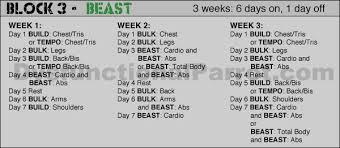 Beast Meal Plan Spreadsheet Review Beast Part 2 Of 2