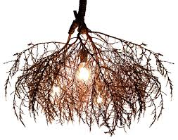 the chandelier rustic chandeliers by same tree
