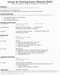Job Resume Writing Sample by Free Example And Writing Sample Basic Resume Tips Job Resume Free