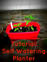 How To Make A Self Watering Planter by Tutorial Homemade Self Watering Planter Frugal Upstate