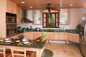 furniture astounding kitchen interior design ideas with state of