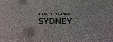 Albemarle Carpet And Upholstery Best 25 Local Carpet Cleaners Ideas On Pinterest Va Denver