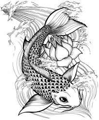 drawn fishing koi fish pencil and in color drawn fishing koi fish