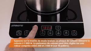 plaque de cuisine plaque de cuisson à induction