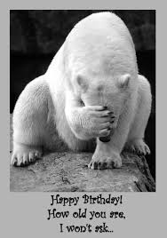Birthday Animal Meme - funny animal birthday card