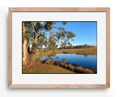 Gosford Central Coast Australia Pinot Country Real Living Photo Art