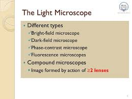a light microscope image is formed by chapter 3 microscopic observation of microorganisms ppt video