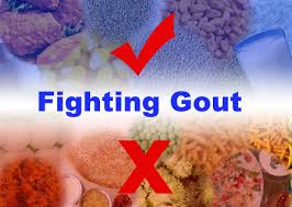 foods to eat and not to eat when you have gout