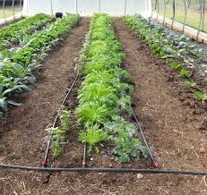 drip irrigation irrigation supplies and diy kits for growing