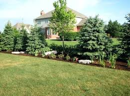 Privacy Garden Ideas Privacy Landscape Pictures Landscaping Ideas For Backyard