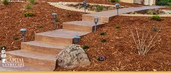drought tolerant landscape design sacramento