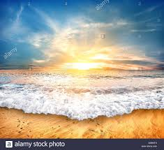 Sand Beach by Tropical Yellow Sand Beach And Blue Sky Stock Photo Royalty Free