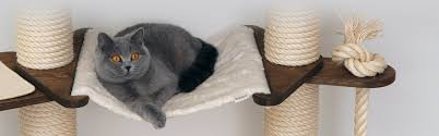 profeline cat trees scratching posts and cat supplies