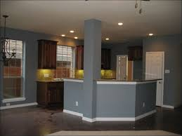 kitchen kitchen colors with brown cabinets painting oak kitchen