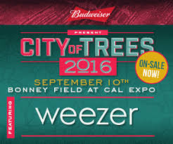 andrew mcmahon in the wilderness city of trees on sale now