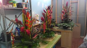tropical flower arrangements new tropical flower arrangements exotica tropicals tropical