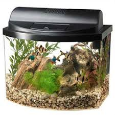 Fish Tank Desk by 7 Awesome Desktop Aquariums For The Office Home Aquaria