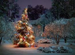 christmas tree night new year tree house spruce snow garland