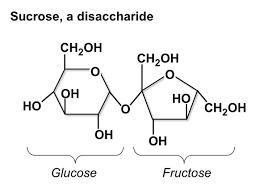 Table Sugar Formula Carbohydrates