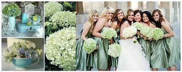 wedding flowers gloucestershire wedding flowers and their meanings hydrangea maybrides