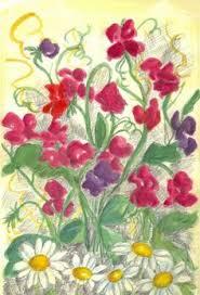 sweet pea daisy flower garden watercolor fine art blank card