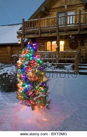 an outside tree decorated with ornaments after a new