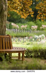 Circular Bench Around Tree Circular Bench Around A Tree Stock Photo Royalty Free Image