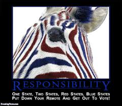 voter responsibility motivational poster pictures