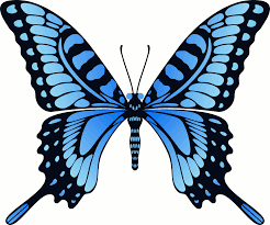 thanksgiving animated gif butterfly animated gif coloring page