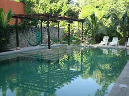 hammocks under the pergola and over the pool pools pinterest