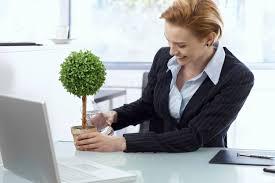 mettre sur le bureau quelles plantes mettre dans bureau pratique fr