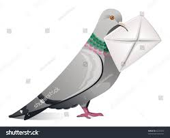 image gallery messenger pigeon