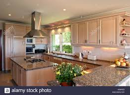 bright modern kitchen bright modern airy kitchen with wood panels and flowers for stock