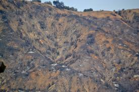 john muir fire quote john muir and the san gabriel mountains and then there u0027s fire and
